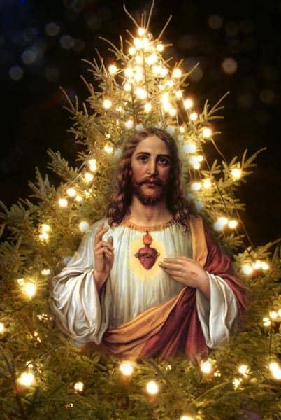 Jesus Xmas Tree
